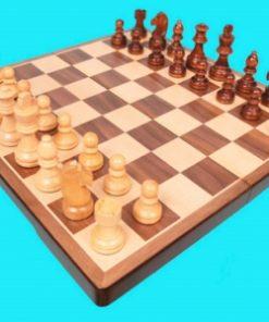Folding Chess Set